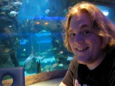 aquarium cafe underwater dining experience