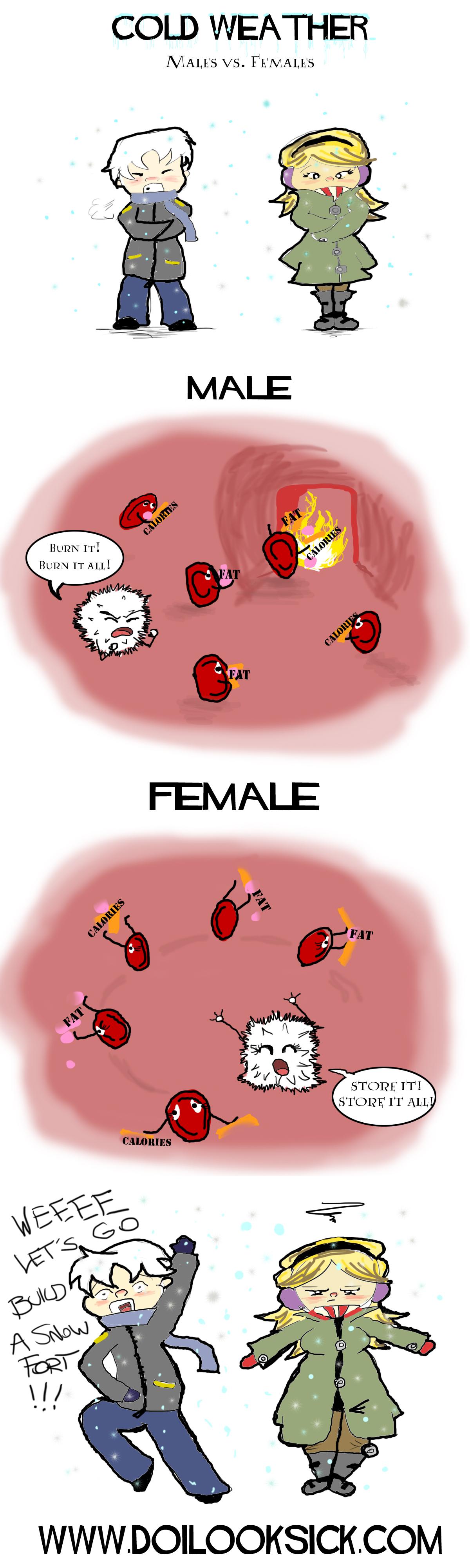 men women male female cold weather anatomy winter