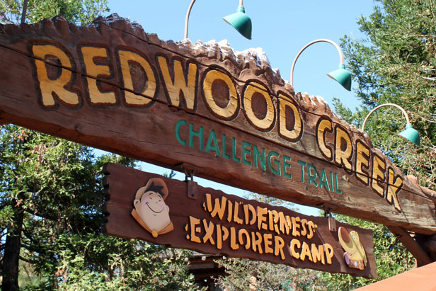 redwood_creek_challenge_trail1