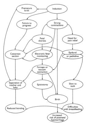 cascade-of-interventions-diagram